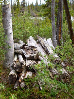 Katseyedie River Grave