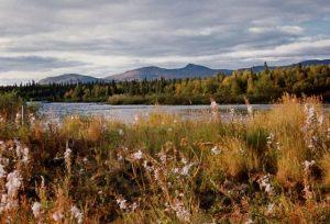 Nyakuk River - Alaska