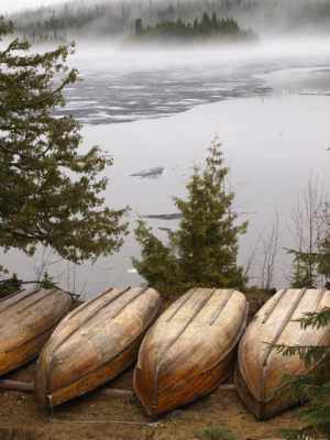 Early Season Ice