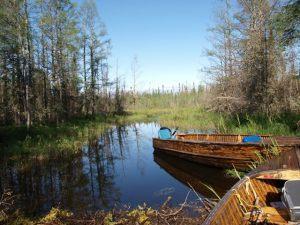 Wonderland - Esnagami Lake