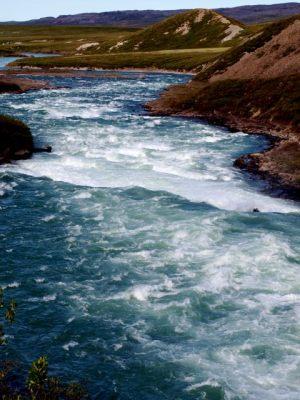 Tree River - NWT