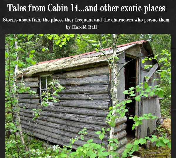Tales from Cabin 14 ... and other exotic places